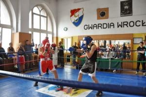 sobota-bokserska-8-03-416