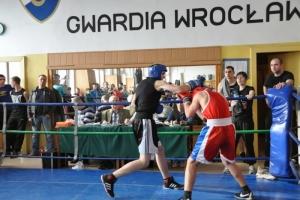 sobota-bokserska-8-03-475