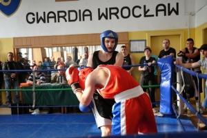sobota-bokserska-8-03-542
