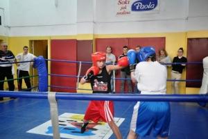 sobota-bokserska-8-03-926